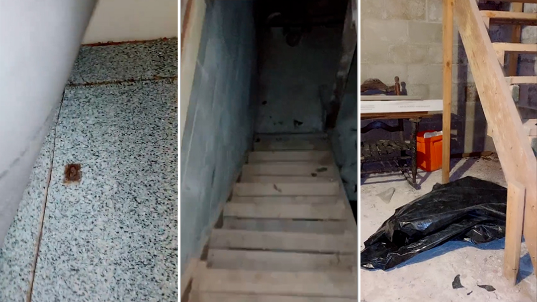 Woman shares sinister find under carpet of home