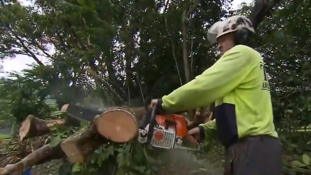 Cyclone Niran is strengthening in Queensland's far north