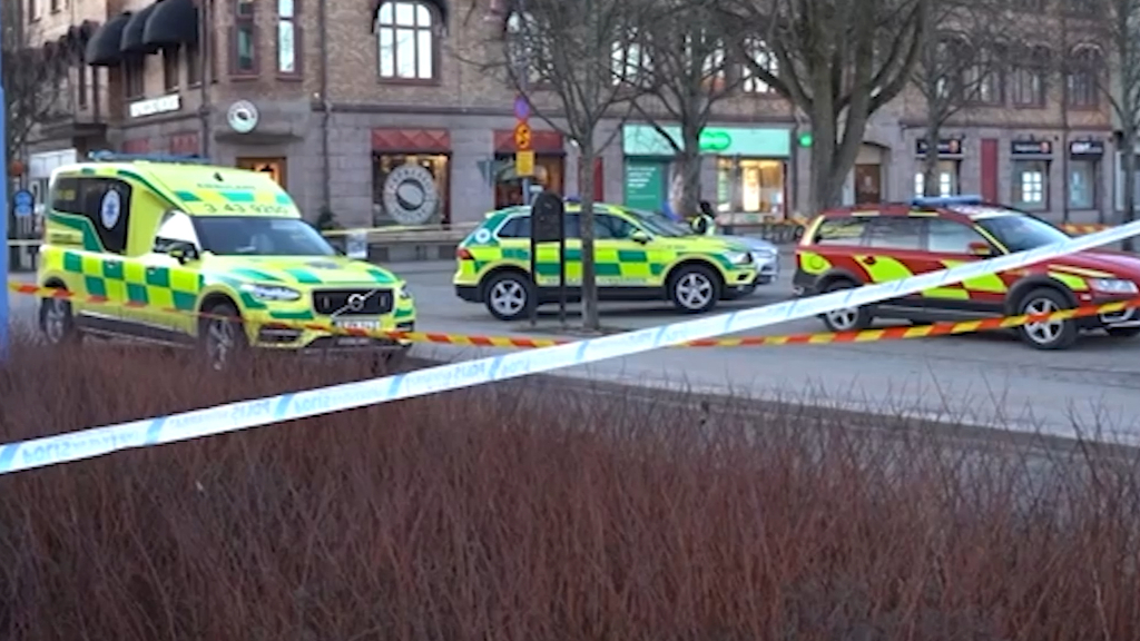 Swedish man injures 8 with axe before being shot by police