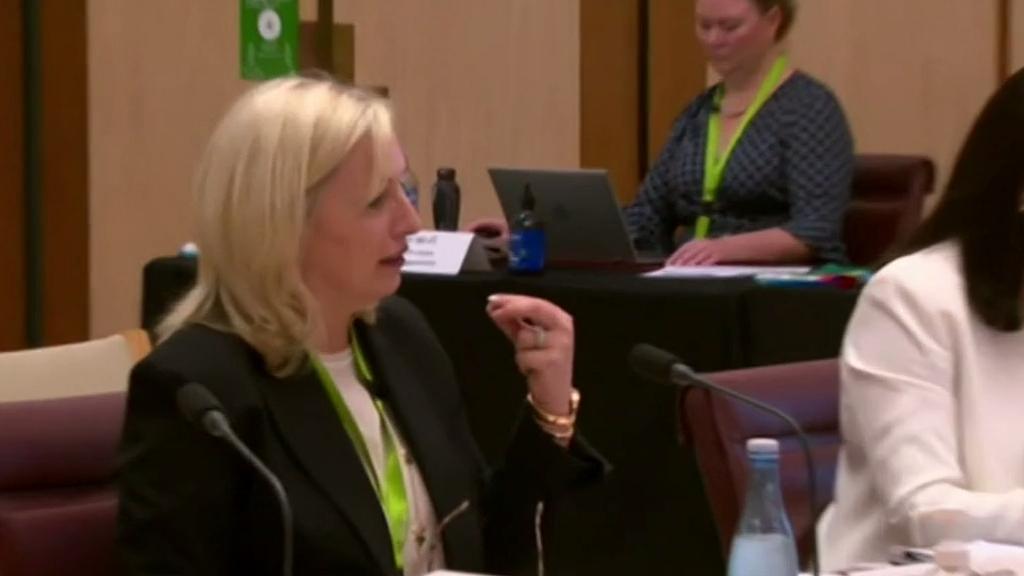 Christine Holgate speaks out after sacking