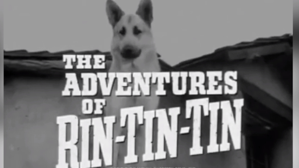 The Adventures of Rin Tin Tin opener