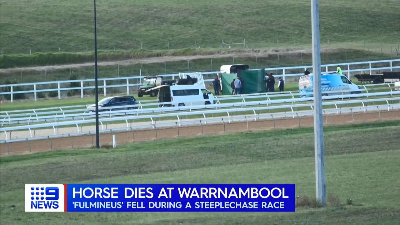 Warrnambool carnival marred by horse's death