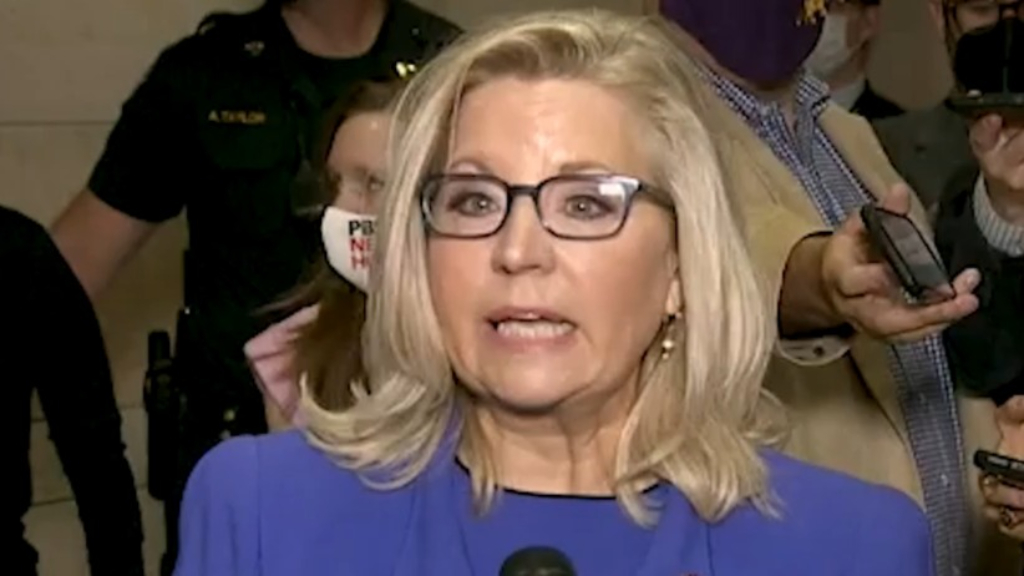 Top Republican Liz Cheney ousted for opposing Trump