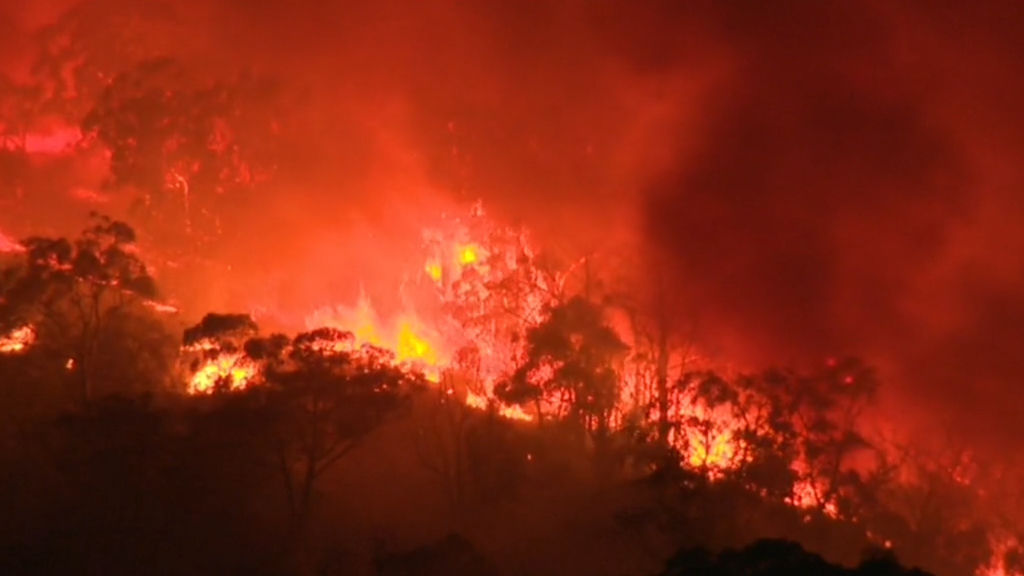 Man accused of lighting bushfire appears in court