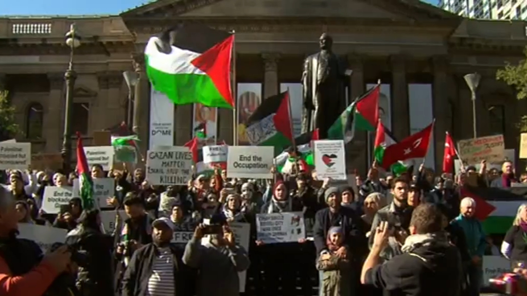 Crowds gather for Palestine rally