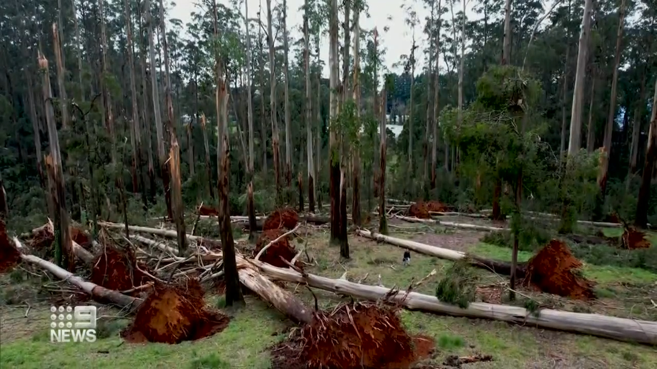 Victorians still affected by storm deluge