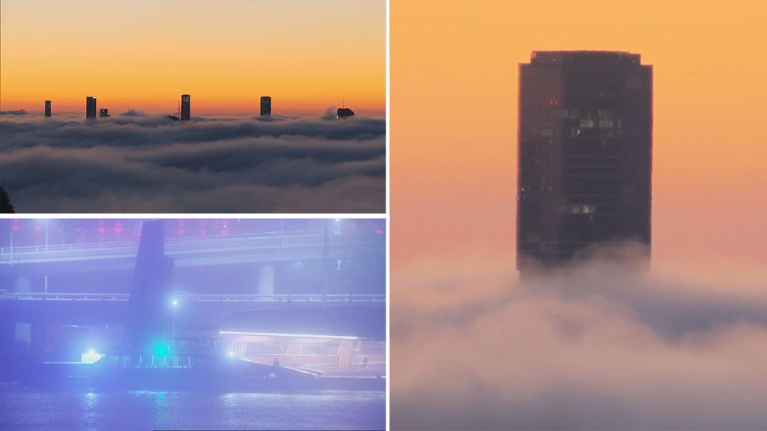 Thick fog blankets Brisbane