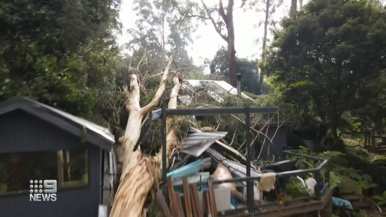 Thousands of homes still without power in Victoria amid storm clean-up