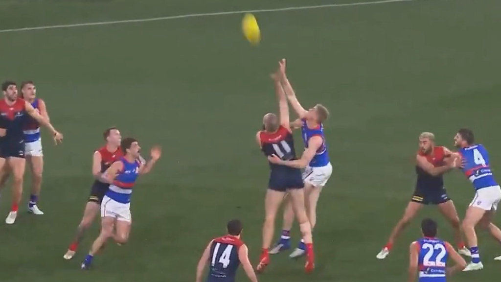 Dogs receive a boost from The Bont
