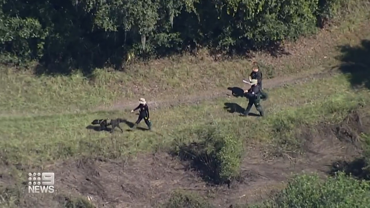 Unidentified remains found in search for Gabby Petito's missing partner