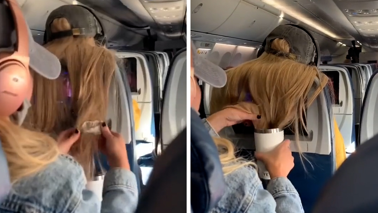 Person praised for taking revenge on passenger's gross hair invasion